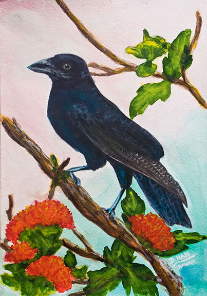 """A'lAla"" Hawaiin Crow, original water color painting by hawaii artist Donald K. Hall #148"