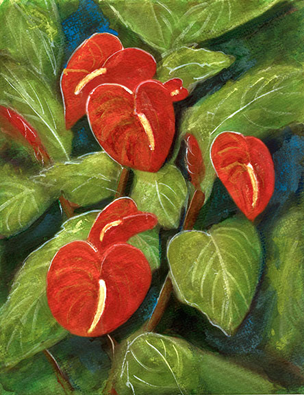 Anthurium Flowers | Hawaii tropical Anthurium flowes  art prints, painting by Hawaii artist Donald K. Hall #231