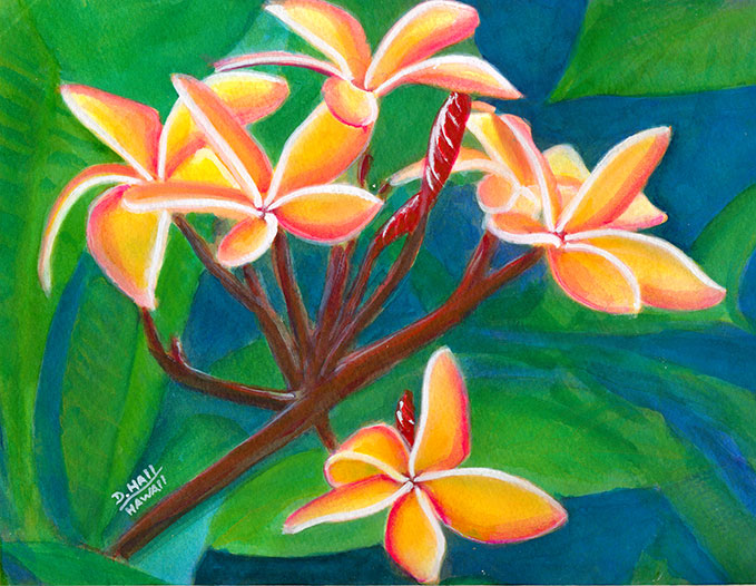 Plumeria  flower, Hawaii tropical flowes  original water color painting by Hawaii artist Donald K. Hall #232