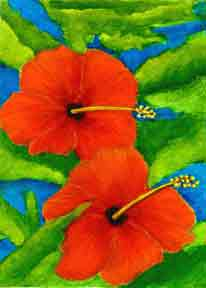 hawaii Art Prints, Hibiscus Flower painting by hawaii artist Donald K. Hall #267