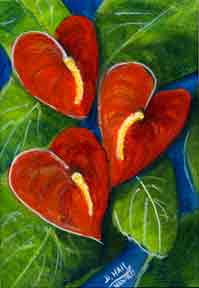 Anthurium flower, Hawaii Tropical Anturium flowes  art prints, painting by Hawaii artist Donald K. Hall #272