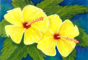 hawaii Art Prints, Hibiscus Flower painting by hawaii artist Donald K. Hall #292