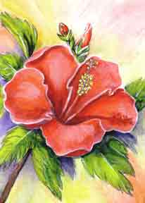 hawaii Art Prints, Hibiscus Flower painting by hawaii artist Donald K. Hall #301