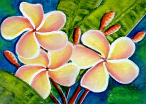 Plumeria  flower, hawaii tropical flowes  art prints, painting by hawaii artist Donald K. Hall #314