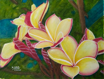 Plumeria Flower Hawaiian art original Water Color painting  by Hawaii Flower artist Donald K. Hall #435