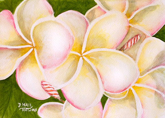 Plumeria  flowers, Hawaii tropical flowes art prints, Original Water Color painting by Hawaii artist Donald K. Hall #483