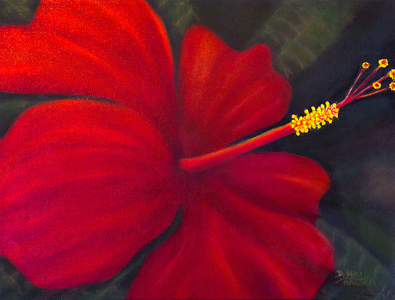 Red Hibiscus Original flower Oil painting,  for sale, by Hawaii artist Donald K. Hall #484