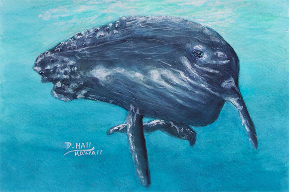 Humpback Whale, Original Water Color Art Painting  for sale No:490
