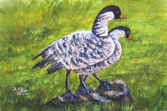 Nene Birds, Original Water Color  Art Painting for sale No:491