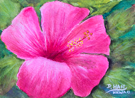Pink Hibiscus Original flower Water Color painting,  art prints, by Hawaii artist Donald K. Hall #505