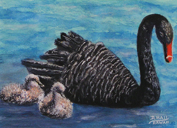 Black Swan and Cygnets Original Water Painting by Hawaii Artist Donald K Hall #515